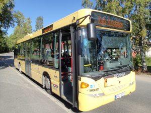 Gul buss